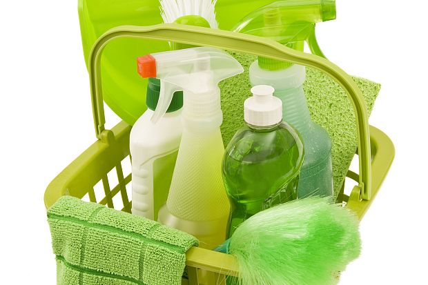 Green Cleaning Movement